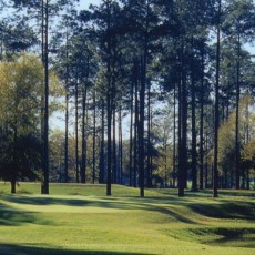 Source:http://www.lakeblackshearresort.com/golf.asp
