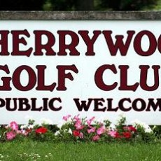 Cherry wood golf club