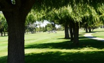 Cordova-Golf-Course.jpg