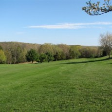 GAINFIELD FARMS GOLF COURSE, IIC