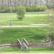 Holly-Hills-Golf-Club.jpg