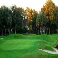 Orange-Tree-Golf-Club.jpg