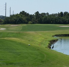 Oyster-Creek-Golf-Country-Club.jpg