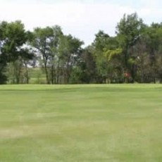 Pheasant_Country_Golf_Course_-_Pheasant_1_379757.jpg