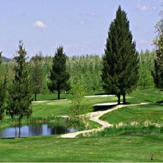 Piney Apple Golf Course