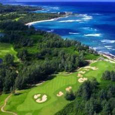 The-Turtle-bay1.jpg