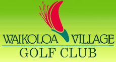 Waikoloa-Village-Golf-club.png
