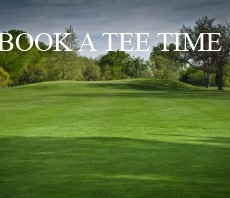 book a tee time website