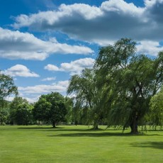 willowcreek-9th-hole1.jpg